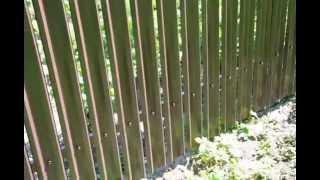 видео Металлический штакетник Забор из сетки Рабица