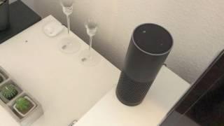 Amazon Echo: Top Befehle für den Alltag!