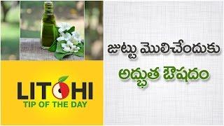 Bhringraj (Guntagalagara Aku) oil for Hair growth | Hair Growth Naturally | Litchi Tip of the Day