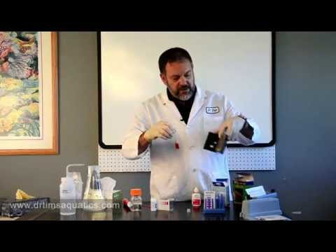 How To Use Water Test Kits - DrTim's Aquatics