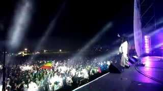 Jamming Festival 2014 / Zona Ganjah / vibra positiva