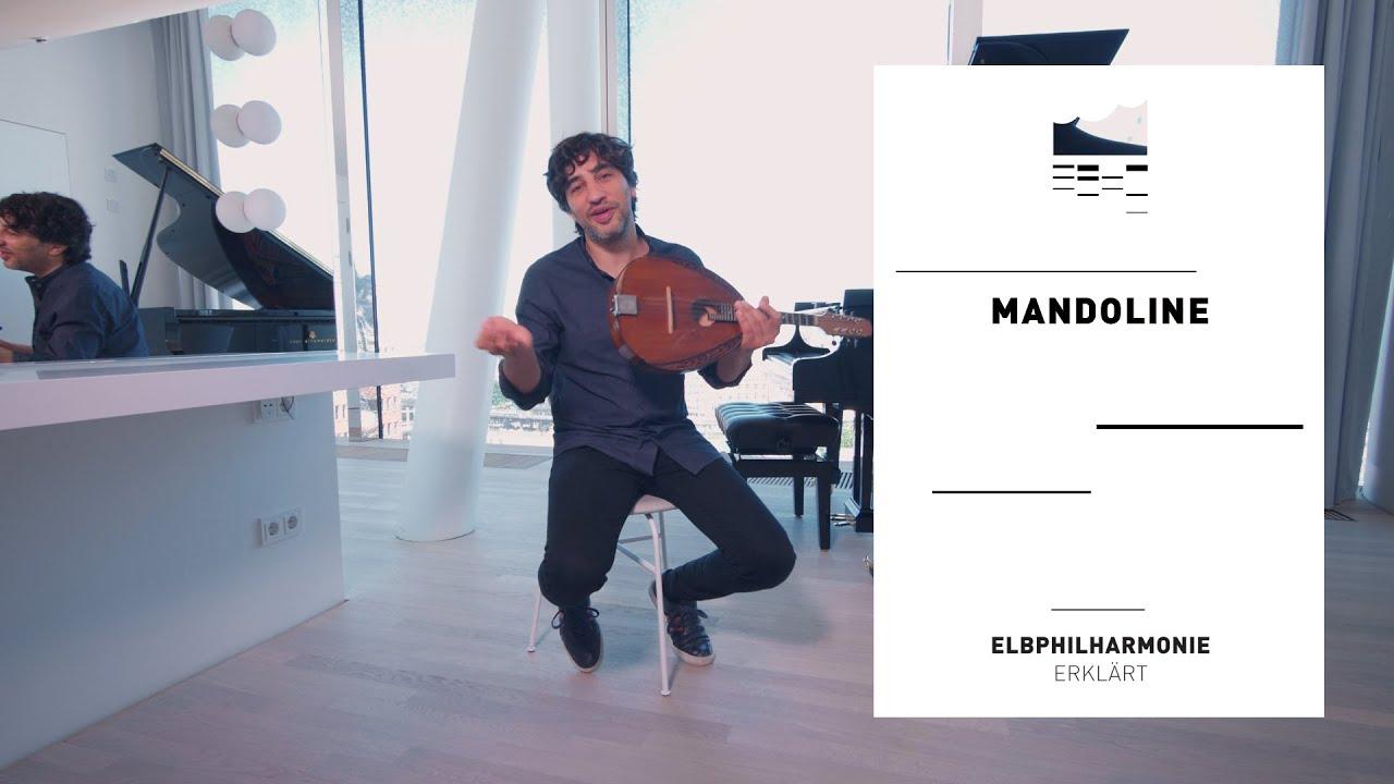Elbphilharmonie Erklärt... | die Mandoline