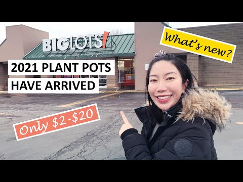 Big Lots: All Pots Under $20! 2021 Plant Pots and Gardening Supplies Have Finally Arrived!
