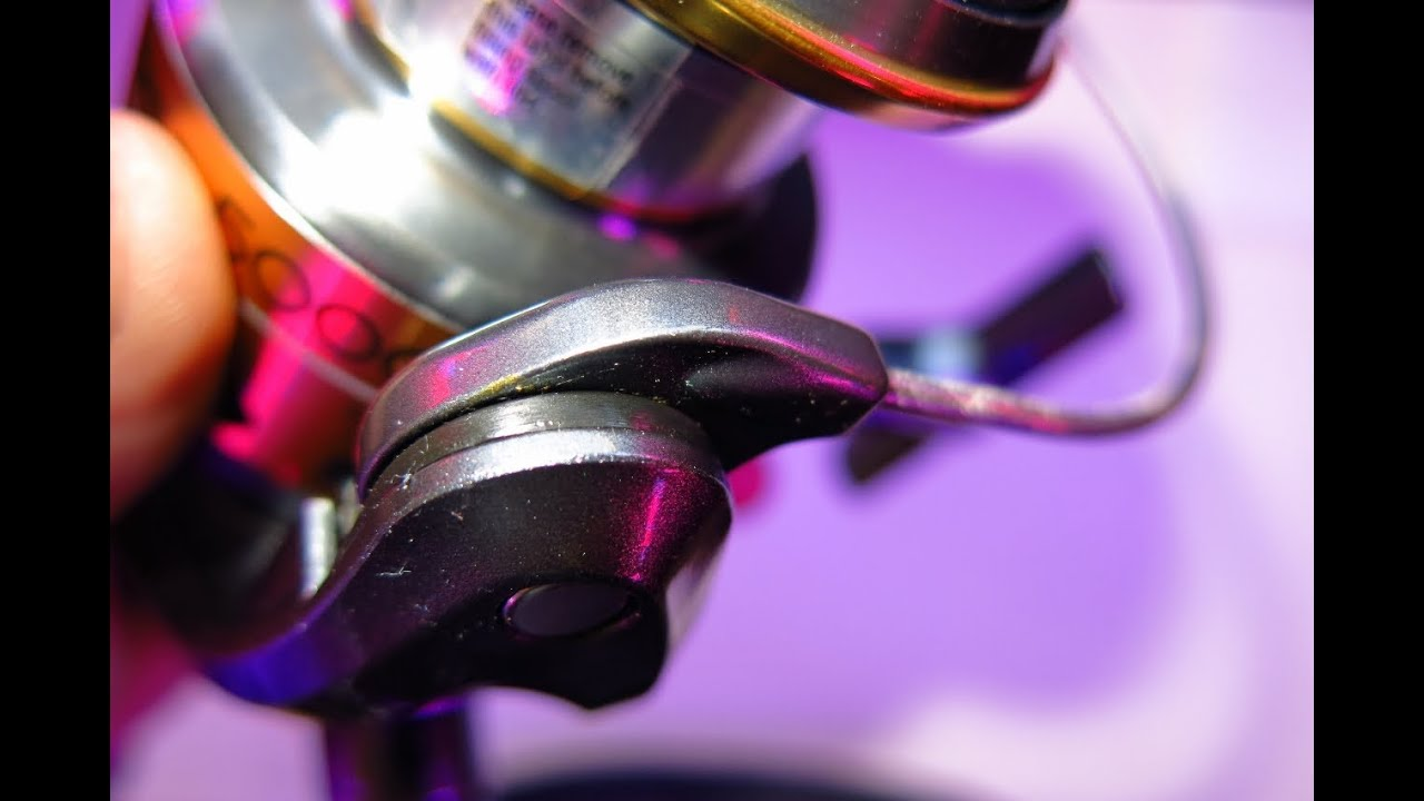 Spinning Reel Maintenance Tips - best-spinningreels