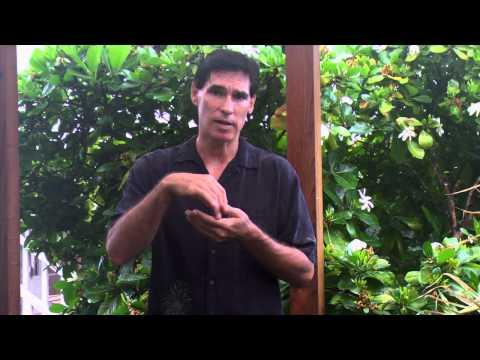 Hawaiian Language Classes - Mo