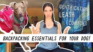 10 Backpacking Essentials f๐r Your Dog | Miranda in the Wild