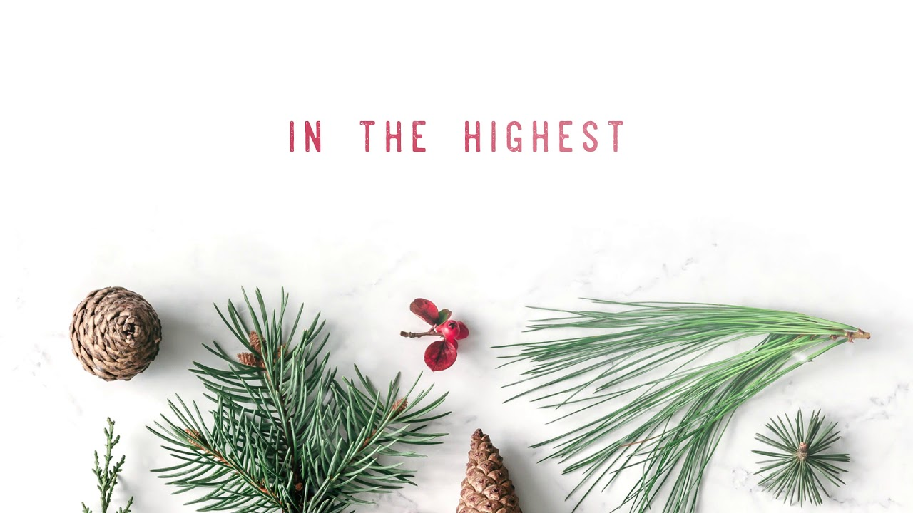Glory in the Highest, Meredith Andrews