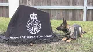 Canine Unit 25th Anniversary Ceremony