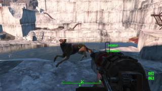 Fallout 4 glitch: Dogmeat swimming in midair
