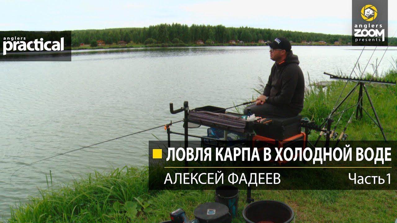 Ловля карпа в холодной воде. Алексей Фадеев.  1 часть