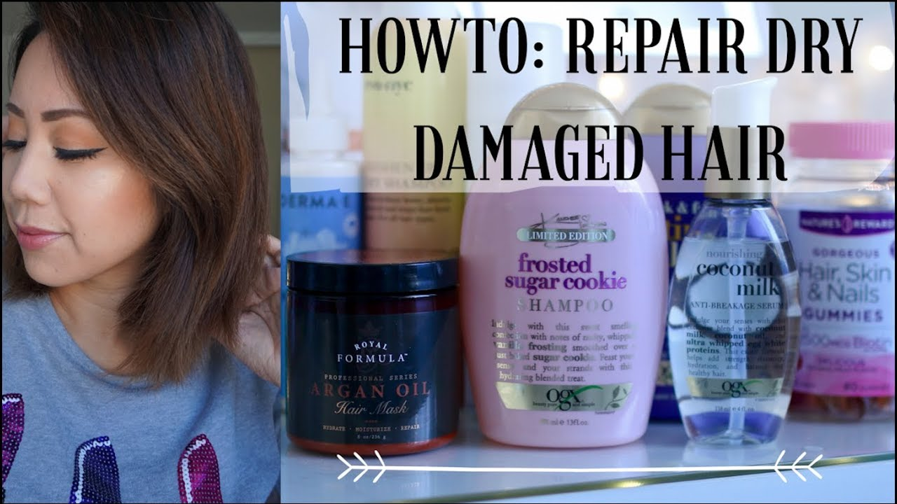 HOW TO: REPAIR DRY DAMAGED HAIR FAST