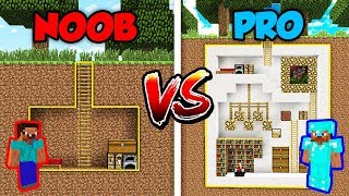 Minecraft NOOB vs. PRO: SECRET HOUSE in Minecraft!