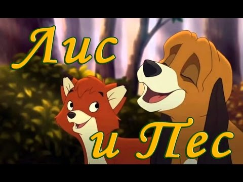 Лис и собака мультфильм