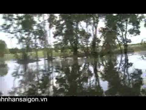 Vườn quốc gia Tràm chim - báu vật của Đồng Tháp