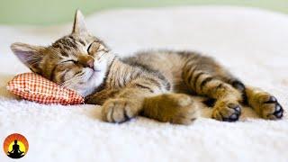 🔴 Relaxing Sleep Music 24/7, Sleep Music, Insomnia, Sleep Meditation, Spa, Study Music, Yoga, Sleep