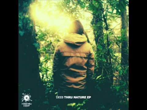 deeB - Thru Clouds [Thru Nature EP DWK208]