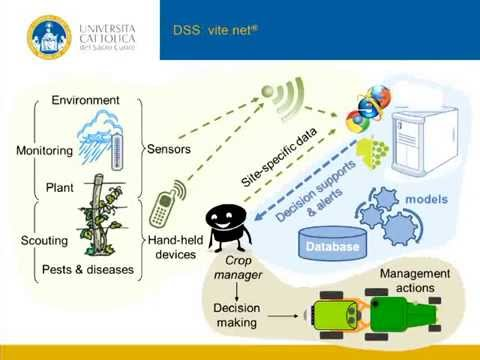 Innovine project : Vite.net, a DSS for sustainable Vineyard Management