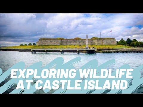 Fishin' And Crabbin' At Castle Island | Save The Harbor/Save The Bay