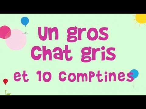 Jacques Haurogné - Un Gros Chat Gris Et 10 Comptines Et Jeux De Doigts