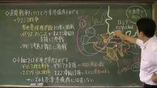 136 東方問題・クリミア戦争(教科書263)世界史20話プロジェクト第14話
