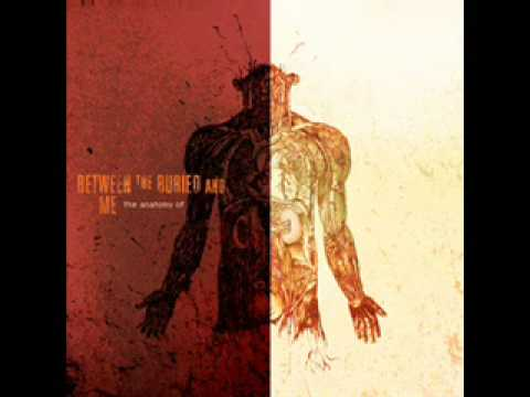 Between the buried and me - colour blind