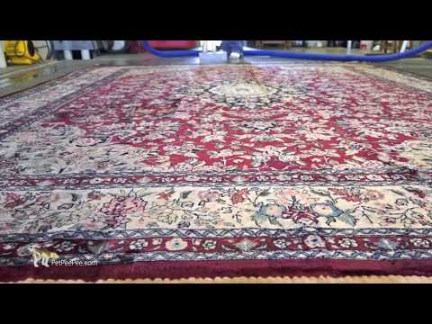I am blue -oriental rug cleaning from urine odor