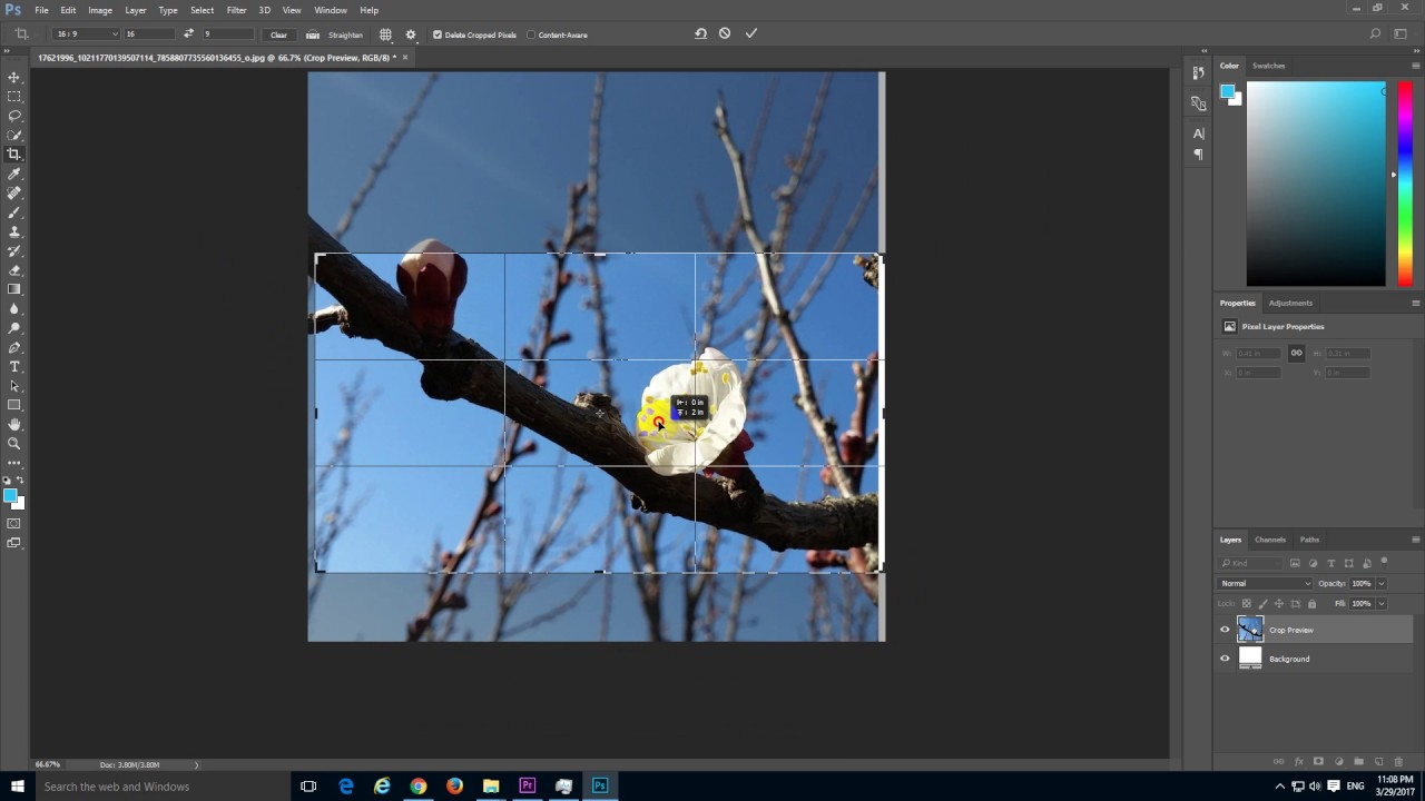 How to Crop an Image to 16 by 9 Aspect Ratio in Photoshop 2017