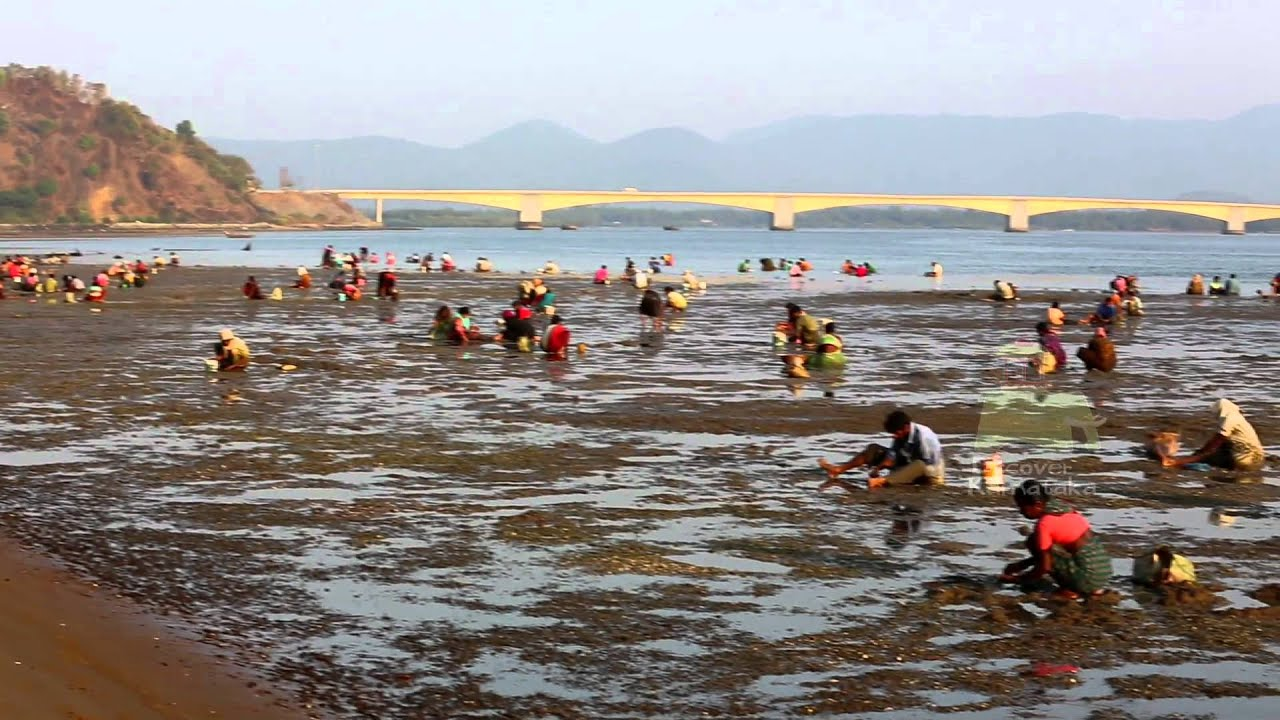 Devbagh Beach Resort Karwar Website