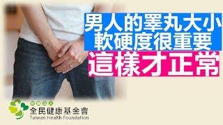男人的 蛋蛋 憂傷 談睪丸疾病