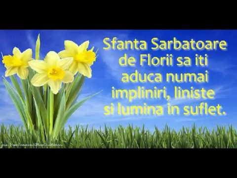 felicitari de ziua floriilor Felicitare muzicala de Florii   YouTube felicitari de ziua floriilor