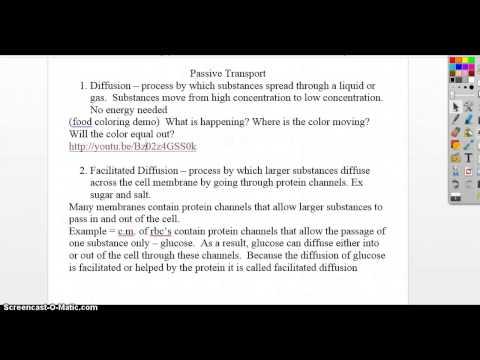 73 Cell Transport Worksheet Answers - Nidecmege