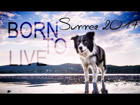 BORN TO LIVE | Summer 2017 ♡