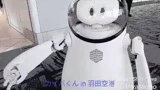 羽田空港に遊びにいったらロボットとお話ができました✨  可愛い.