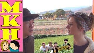 MODERN FARMER REVIEW by Korean Farmers! (Kinda) Ep 1-12