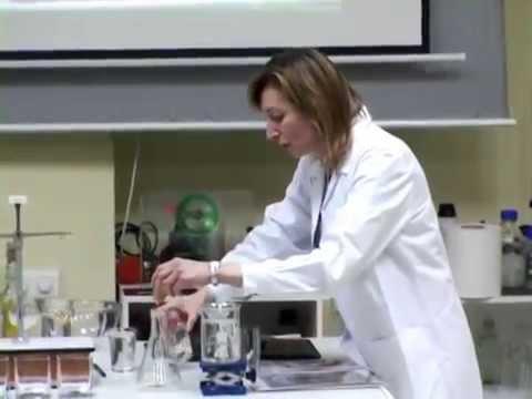 Arte VS Ciencia - Delia García Liarte