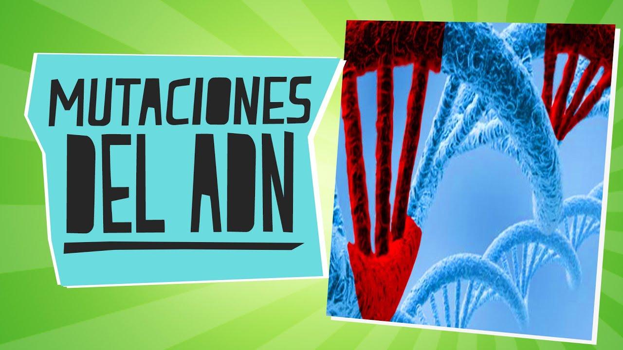 Las mutaciones del ADN - Biología - Educatina - YouTube