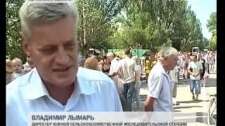 Солодке диво 2012. Голая Пристань. Видео(, 2012-08-18T18:50:34.000Z)