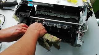 Mantenimiento completo Impresora Epson L800 L805 T50 | Desarmar y Armar