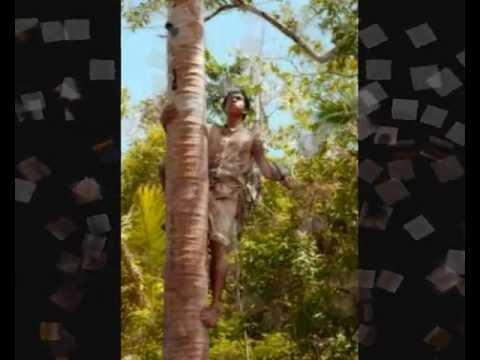 The TA.5 BAND of Niue island vol.1-7.AIR NAURU