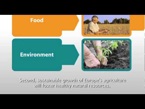 The future of the Common Agricultural Policy. A new partnership between Europe and Farmers