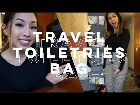 What's In My Travel Makeup & Toiletries Bag? (Business Trip + Vacation) | @ohdangdanii Ft. Dossier
