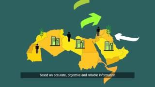 Arab Knowledge Index Infographics