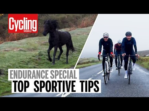 Top Sportive Tips | Endurance Special | Cycling Weekly