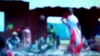 Pachai kiligal tholodu - by Karthik (