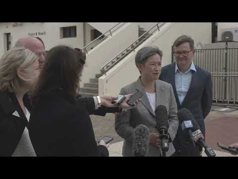 PENNY WONG ON KERRYN PHELPS PREFERENCES DEAL