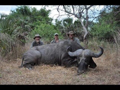 Outdoor Quest Ep#9 2018, Cape Buffalo In Tanzania