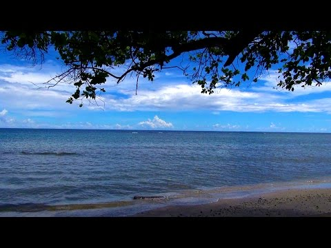 My Solomon Islands visit - March 2017