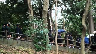 北京天使合唱團 - 快樂的向前走.wmv