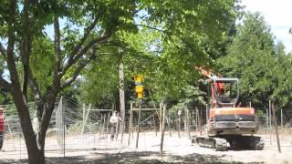 Installing Trellis Poles