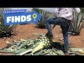 How Tequila Is Made | Food Network Finds